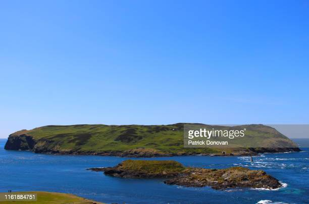 calf of man, isle of man - isle of man stock pictures, royalty-free photos & images