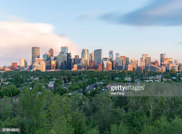 calgary downtown - calgary stock pictures, royalty-free photos & images