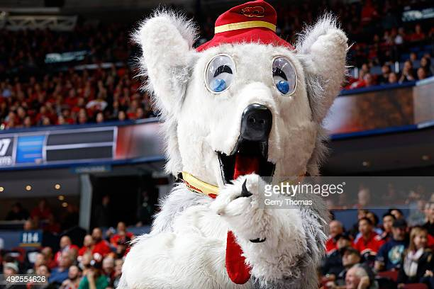 Calgary Flames mascot Harvey the Hound points to the camera during an NHL game against the St Louis Blues at Scotiabank Saddledome on October 13 2015...