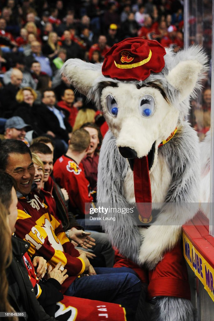 Calgary Flames Mascot Harvey The Hound Rallies The Crowd During News Photo Getty Images