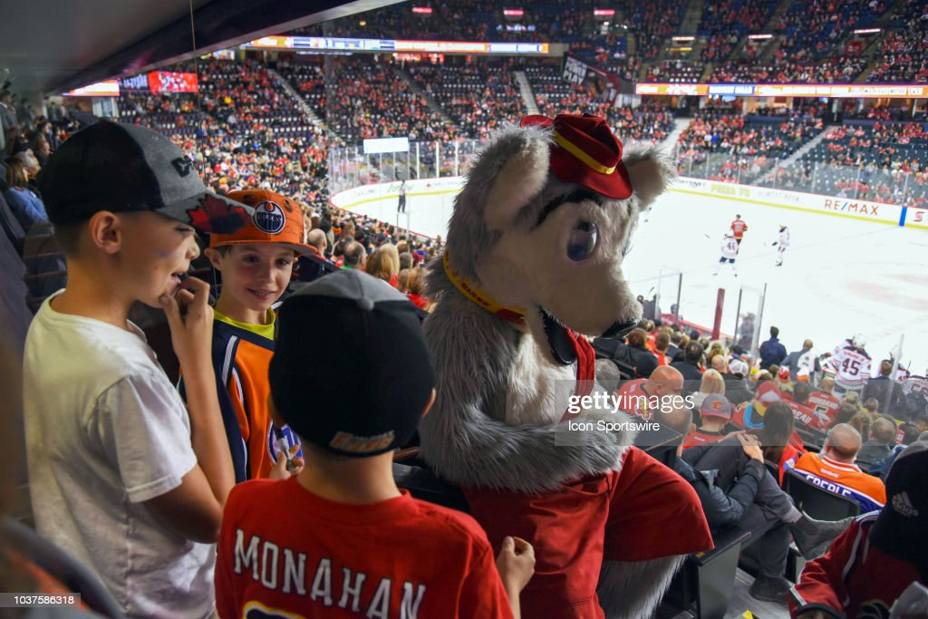 Calgary Flames Mascot Harvey The Hound Signs Autographs During The News Photo Getty Images