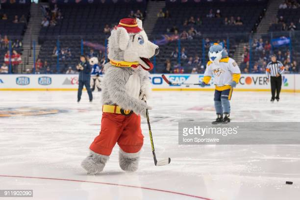 Calgary Flames' mascot Harvey the Hound tracks the puck during the mascot game prior to the NHL AllStar Game on January 28 at Amalie Arena in Tampa FL
