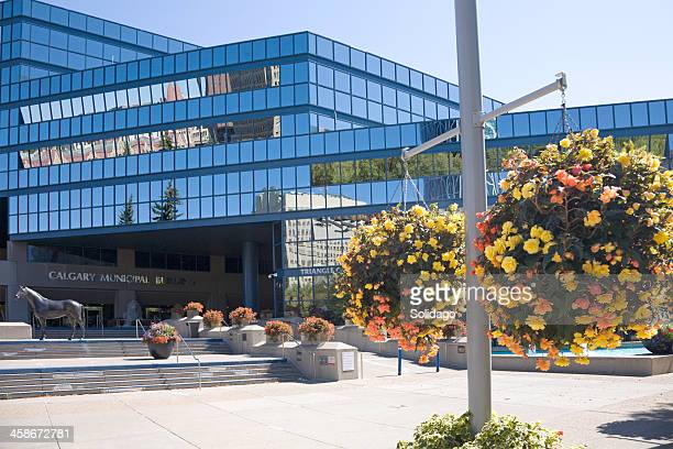 calgary municipal entrance with hanging flowers and reflections - town hall stock pictures, royalty-free photos & images
