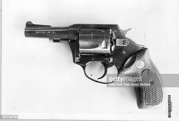 Caliber gun used by David Berkowitz