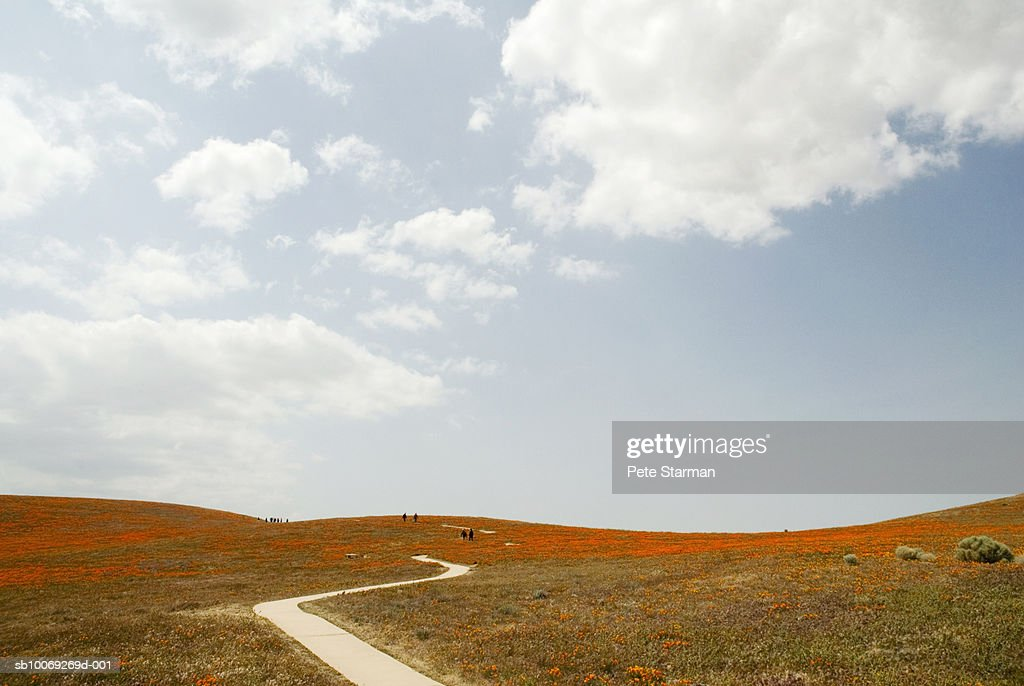 USA, California, Antelope Valley, walking trail in California Poppy Reserve : Stockfoto