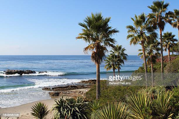 california beach - laguna beach california stock pictures, royalty-free photos & images