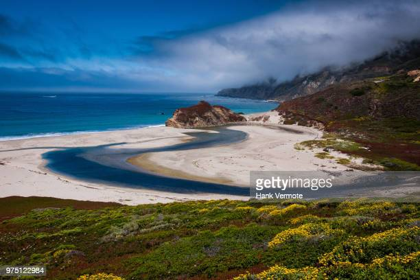 california beach - hank vermote stock pictures, royalty-free photos & images