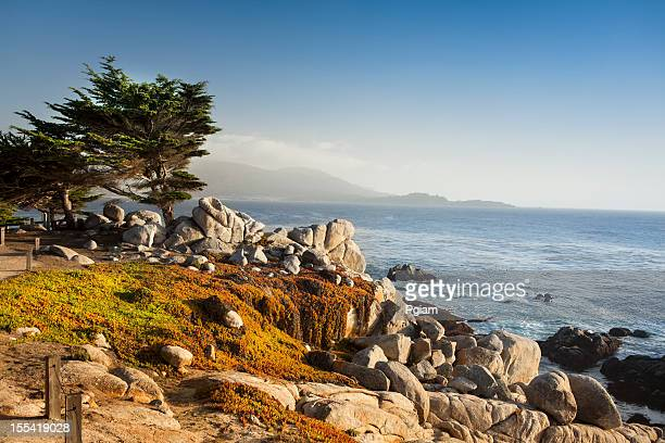 USA, California, Big Sur, Coastline and sea
