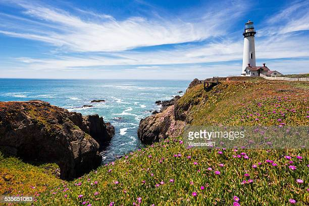 usa, california, big sur, pacific coast, national scenic byway, view to pigeon point lighthouse - san mateo county stock pictures, royalty-free photos & images