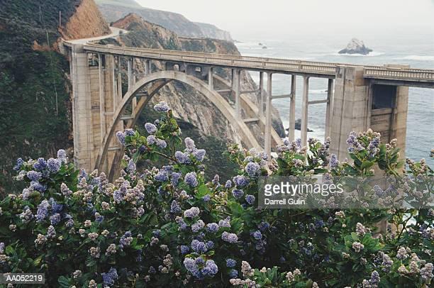 USA, California, Bixby Bridge crossing over Big Sur coastline