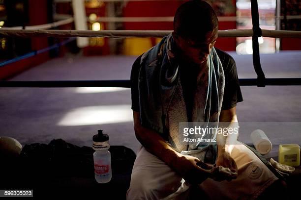 California Boxer