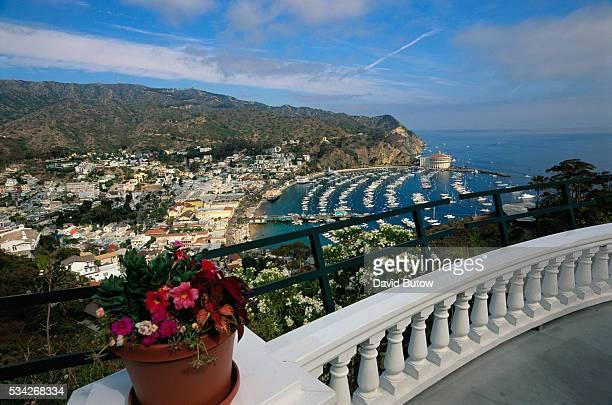 Catalina Island at the Mt Ada Hotel