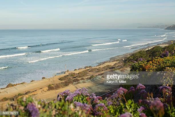 California Coastline in Del Mar