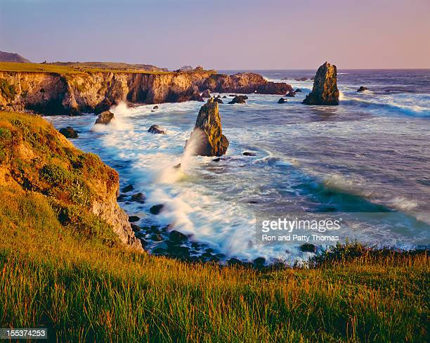 California Coastline  (P)