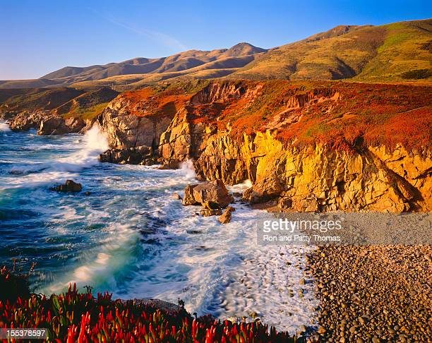 california coastline  (p) - carmel california stock photos and pictures