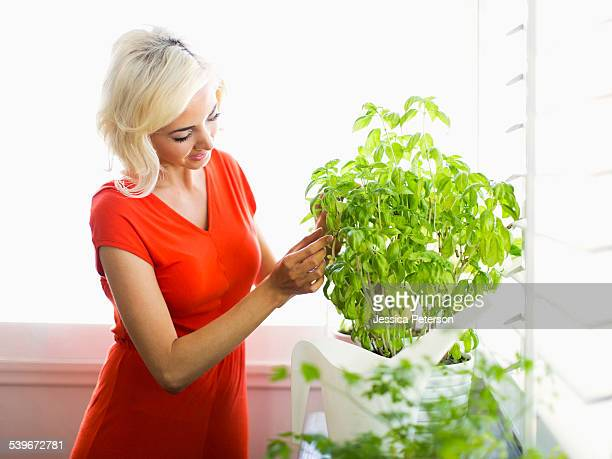 usa, california, costa mesa, woman red dress touching potted plant - コスタメサ ストックフォトと画像