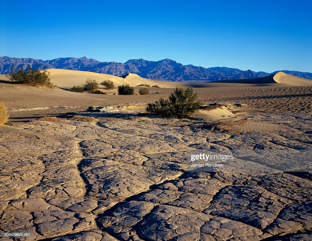 usa california death valley national park ストックフォト getty images