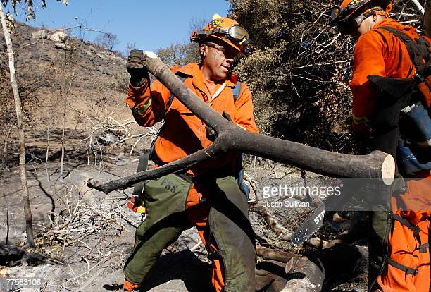 California Department of Corrections prison inmate firefighters remove burned trees from the shoulder of highway 78 October 30 2007 in Ramona...
