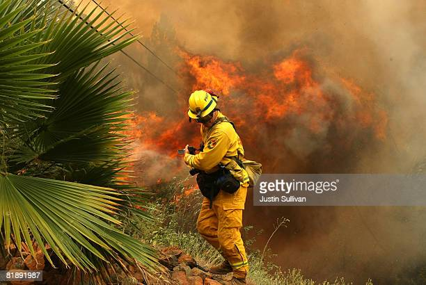 California Department of Forestry photographer shield himself from a flame as spot fire as it burns through trees and brush July 10 2008 in Concow...