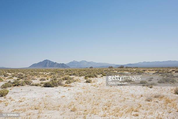 USA, California, Desert landscape
