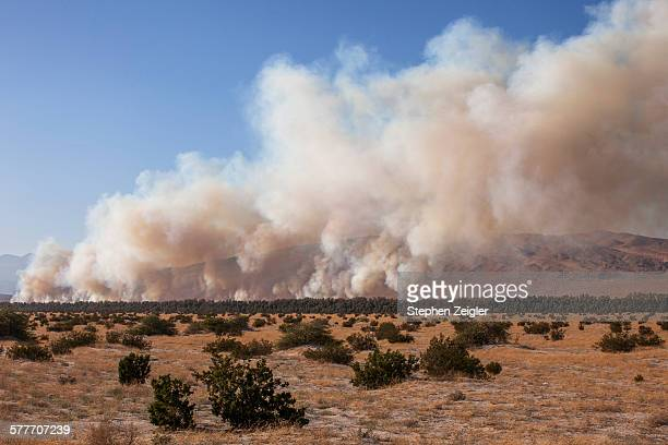 California desert wildfire