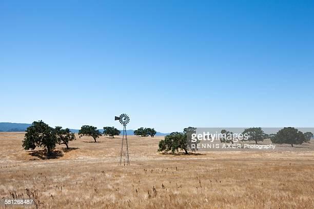 California farm windmill