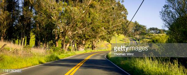 california highway springtime