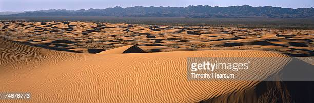 usa, california, imperial county, imperial sand dunes near brawley - timothy hearsum stock photos and pictures