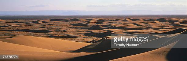 usa, california, imperial county, imperial sand dunes near brawley - timothy hearsum stockfoto's en -beelden