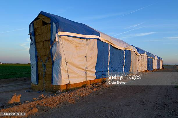 USA, California, Imperial County, tarp covering stack of hay bales