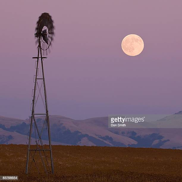 california landscape - don smith stock pictures, royalty-free photos & images