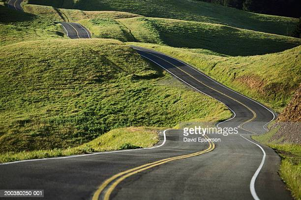 USA, California, Marin County, road running through hills