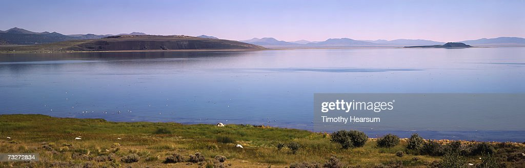 'USA, California, Mono Lake, near Lee Vining, lake with grasses and tufa rock' : Stock Photo