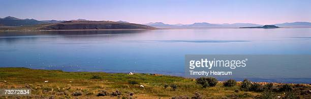 'USA, California, Mono Lake, near Lee Vining, lake with grasses and tufa rock'