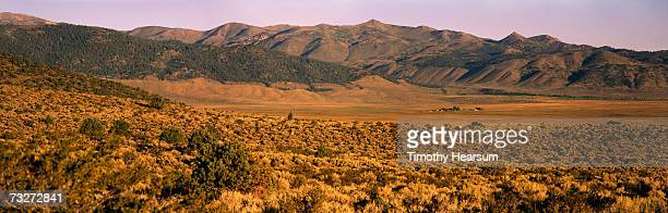 """""""usa, california, near bridgeport, view of mountains with ranch nestled at base"""" - timothy hearsum stock photos and pictures"""