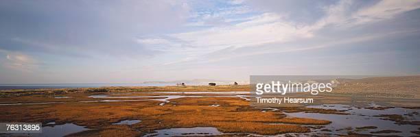 usa, california, near san francisco, point reyes national seashore - timothy hearsum stockfoto's en -beelden