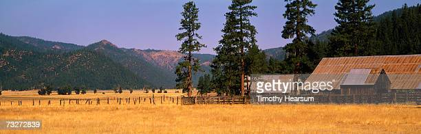 'USA, California, near Taylorsville, metal-roofed barns and fences in field, autumn'