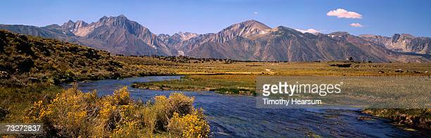 """usa, california, owens river, sierra nevada mountains, river flowing through meadow"" - timothy hearsum stock photos and pictures"