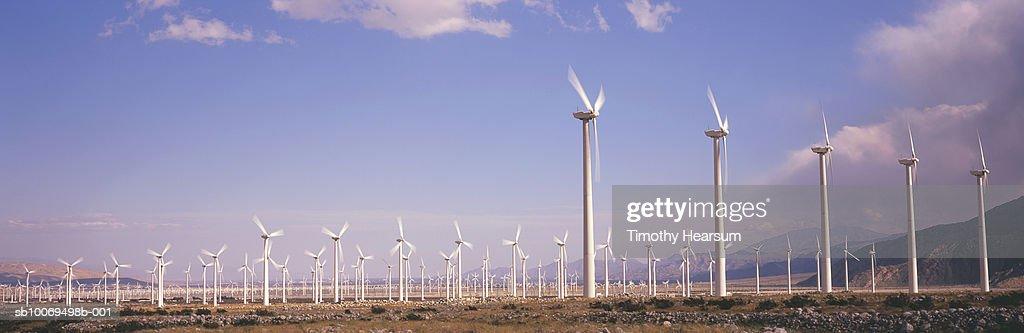 USA, California, Palm Springs, field of wind turbines, panoramic view : Stock Photo