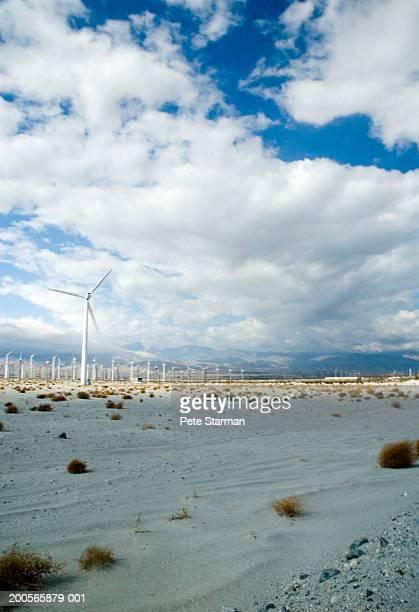 USA, California, Palm Springs, wind turbine farm