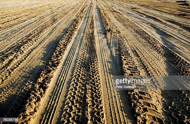 usa, california, pismo beach, off road tire tracks on beach - ピスモビーチ ストックフォトと画像