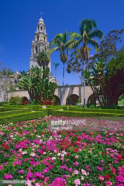 usa, california, san diego, california tower, balboa park, gardens - balboa park stock photos and pictures
