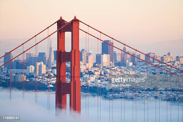 usa, california, san francisco, golden gate bridge in fog - golden gate bridge stock pictures, royalty-free photos & images