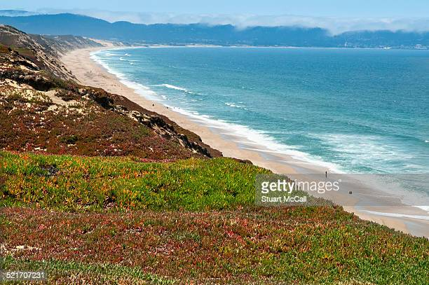 california seaside covered in vegitation - state park stock pictures, royalty-free photos & images