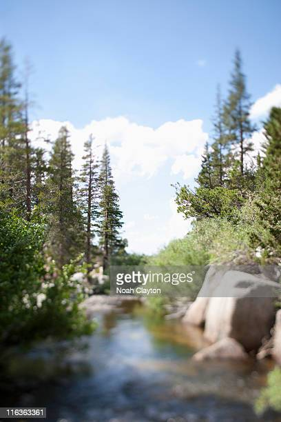 usa, california, sonora pass, landscape with stream - planchas_de_plata,_sonora stock pictures, royalty-free photos & images