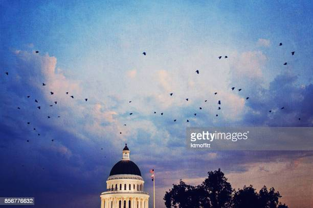 California State Capitol Building at Sunset With Birds