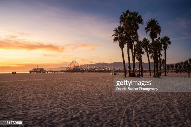 california sunset at the beach - venice beach stock pictures, royalty-free photos & images