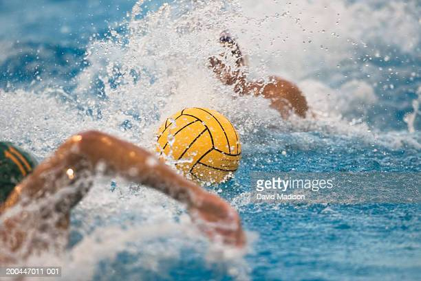usa, california, two waterpolo players swimming for ball - water polo stock pictures, royalty-free photos & images