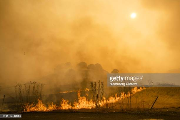 california wildfires - forest fire stock pictures, royalty-free photos & images