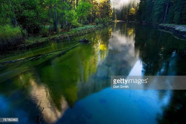 usa, california, yosemite national park, el capitan reflected in merced river - don smith ストックフォトと画像